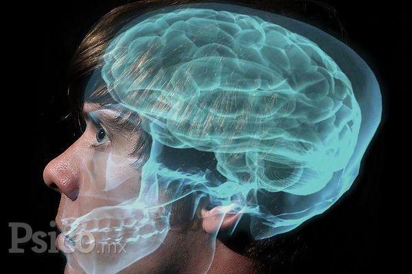 ¿De que se encarga la Neuropsicología?