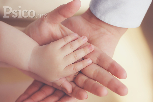 """Desarrollo psico-emocional de la familia: """"El nacimiento del primer hijo""""."""